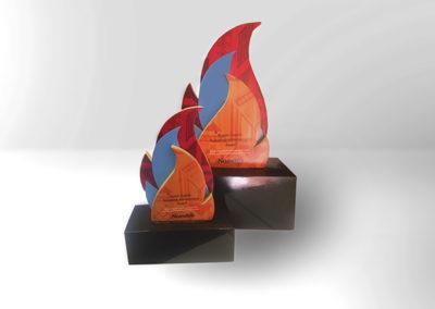 Nandos Excellence Award